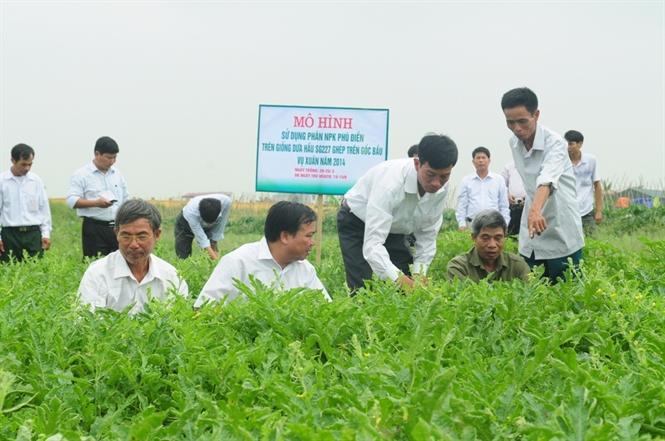 Phân bón Phú Điền tạo hướng liên kết mới trong sản xuất hàng hóa với nông dân
